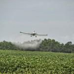Ролята на пестицидите