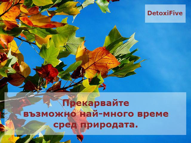 autumn-974882_640