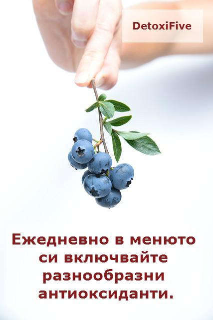 blueberry-539134_640