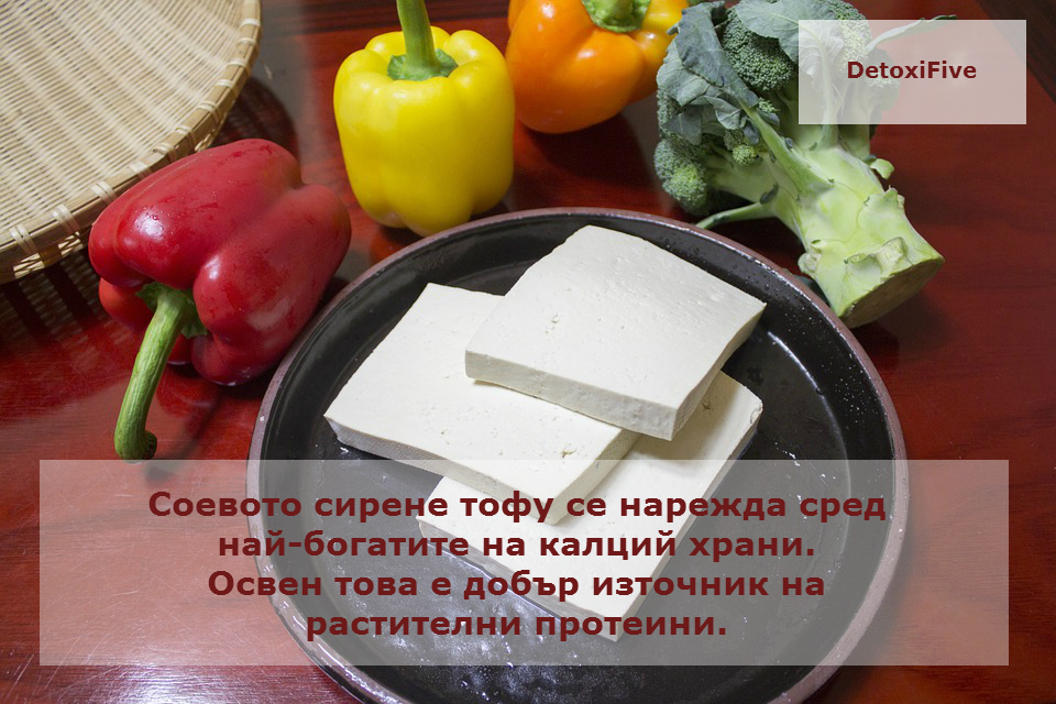 slice-the-tofu-597229_960_720
