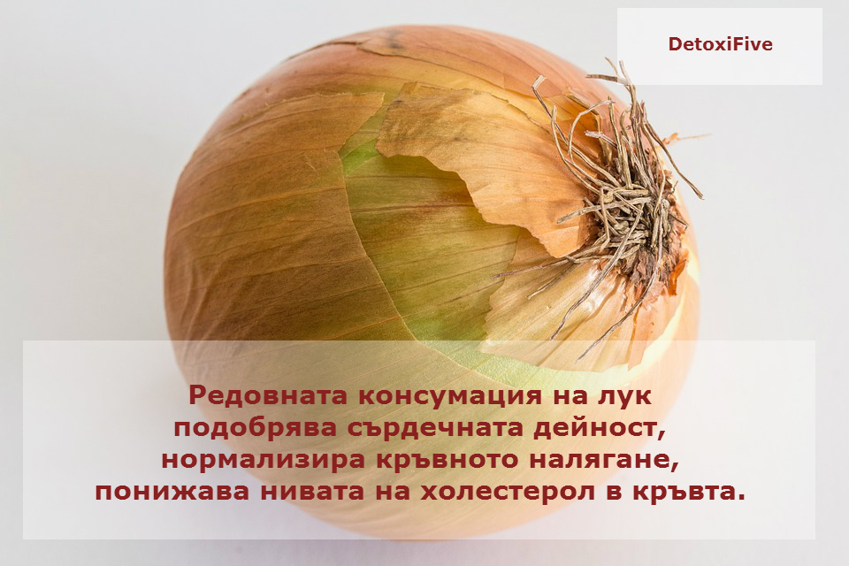 cream-onion-885923_960_720
